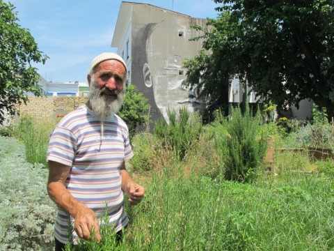 Luciano Furcas - I giardini di Pomona