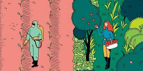 Permacultura 5 marzo - I giardini di Pomona