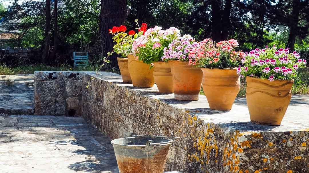 Dottato, esterno - Agriturismo nei Giardini di Pomona