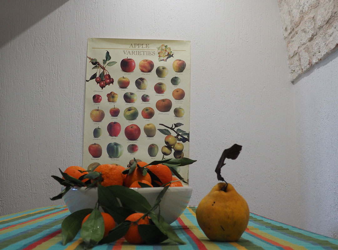 Ostello, cucina - I giardini di Pomona